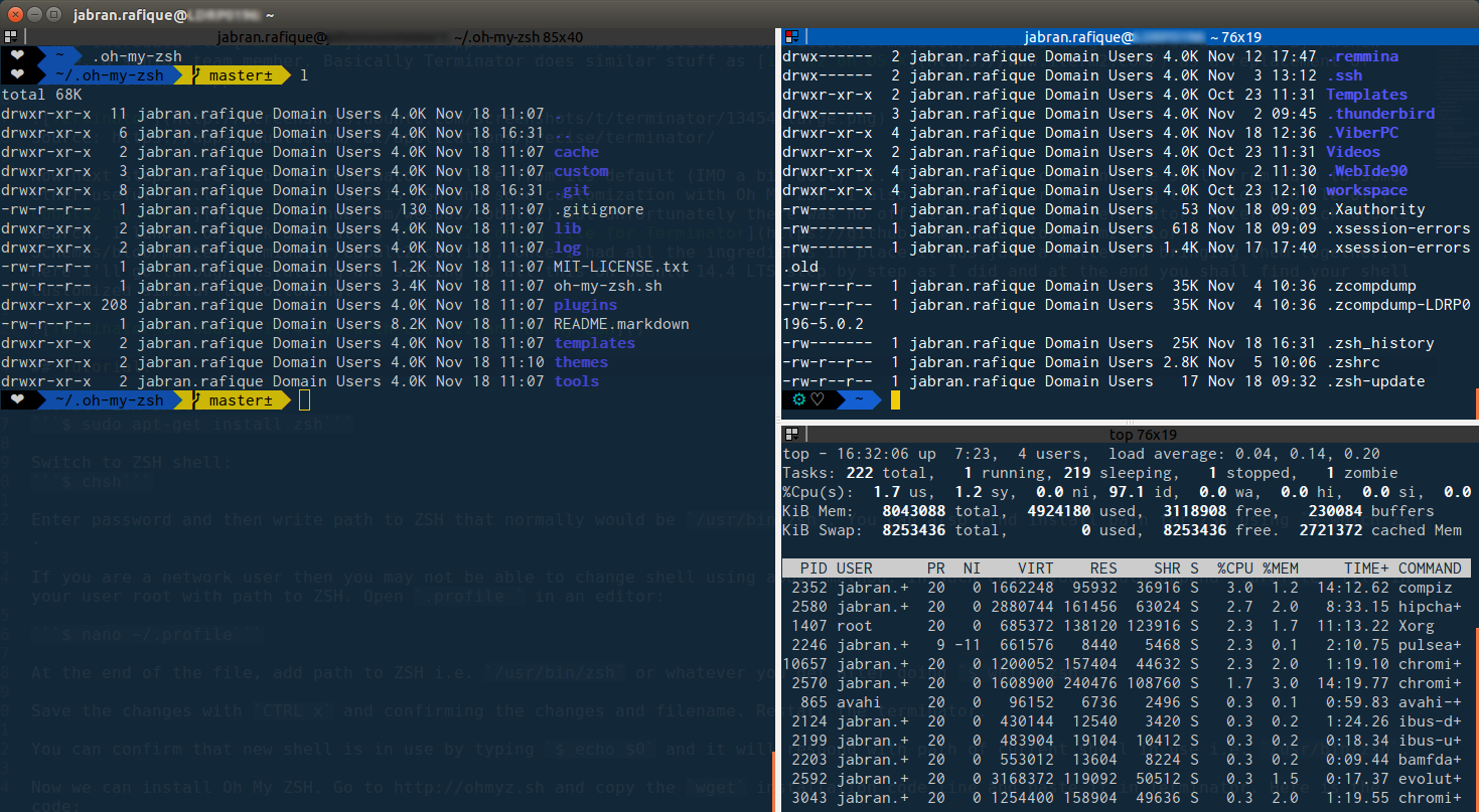 Dev workspace setup on Linux (Ubuntu) with Terminator, Oh My ZSH and